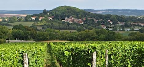 Mooie omgeving Langres en Dijon